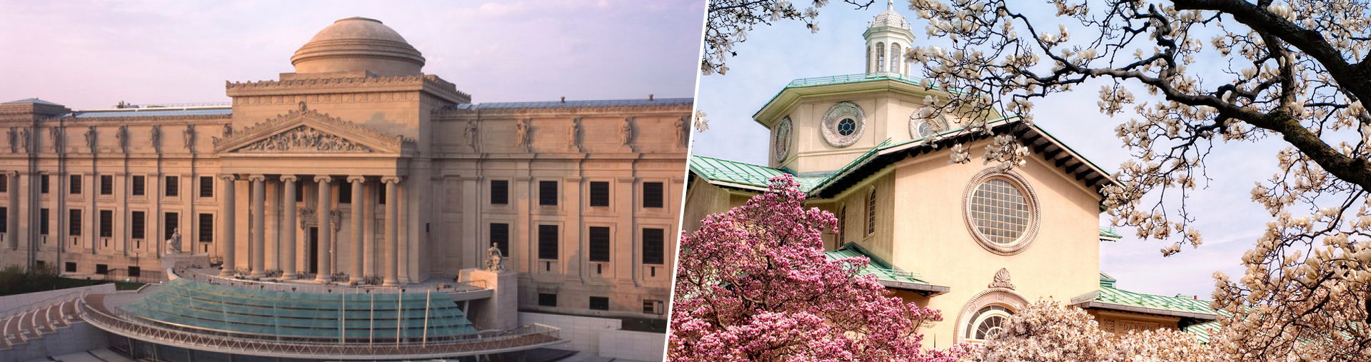 Brooklyn Museum and Brooklyn Botanic Garden Package